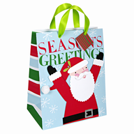 seasons greetings christmas giftbag in bulk
