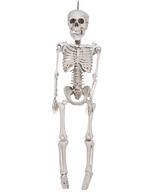discount skeleton hanging
